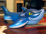Intex Grinning Shark (2010 version)