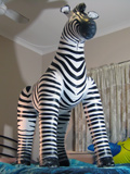 Jets Zebra (version 2)